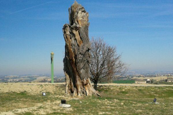 Luoghi di energia e rigenerazione. Colline antiche querce (di Adolfo Leoni)