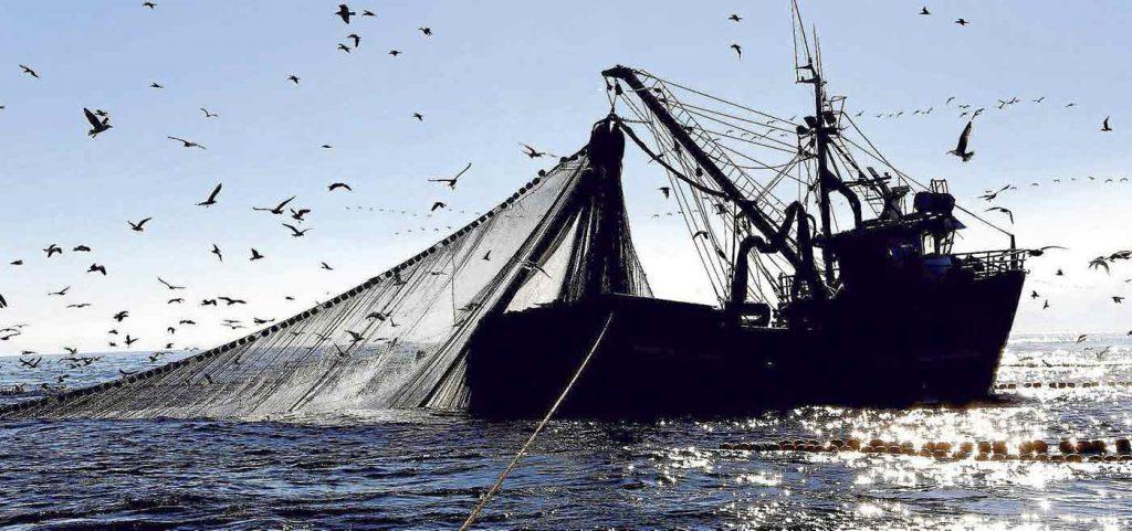 Opportunità per la pesca, mercoledì 22 luglio seminario a Riva Fiorita.